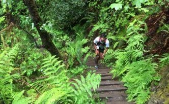 mendocino ultramarathon