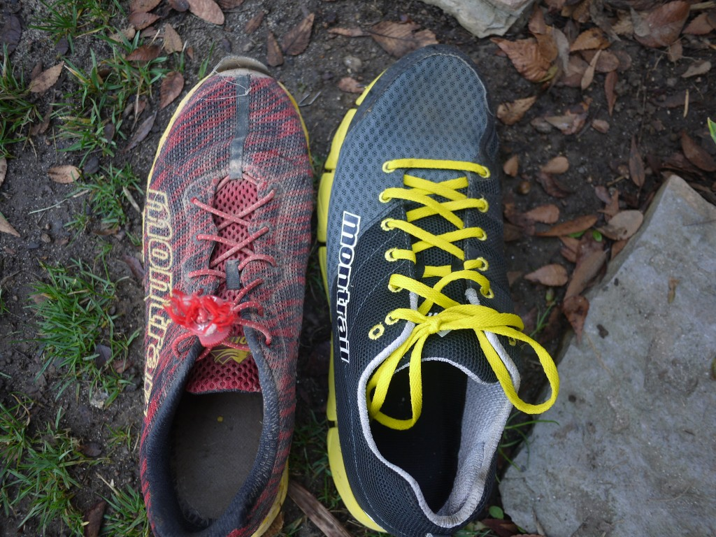 Old and new. The Rogue Fly and the Fluid Flex 2.